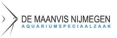 DE MAANVIS NIJMEGEN